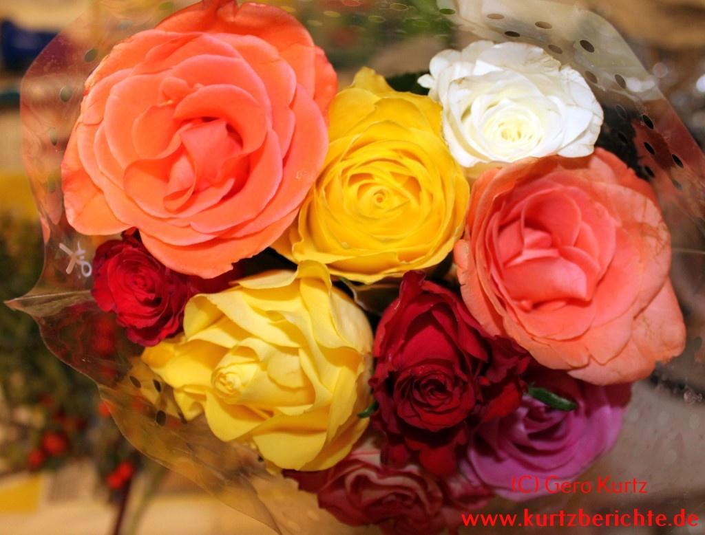 Wo Kann Ich Blumen Kaufen erfahrungsbericht schöne wachsblumen mit stearin bzw tauchwachs